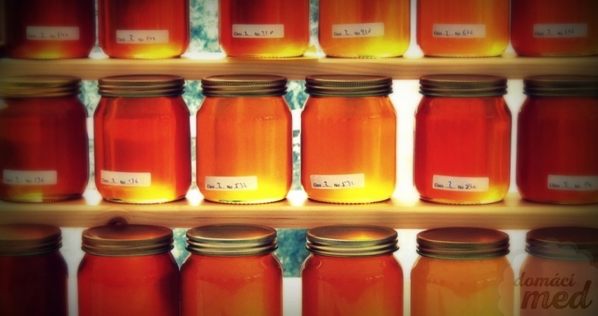 Degustace medů