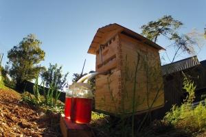 Flow Hive - med vyteče otočením kliky