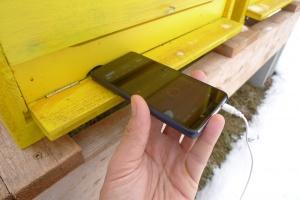 Poslech včel pomocí mobilního telefonu