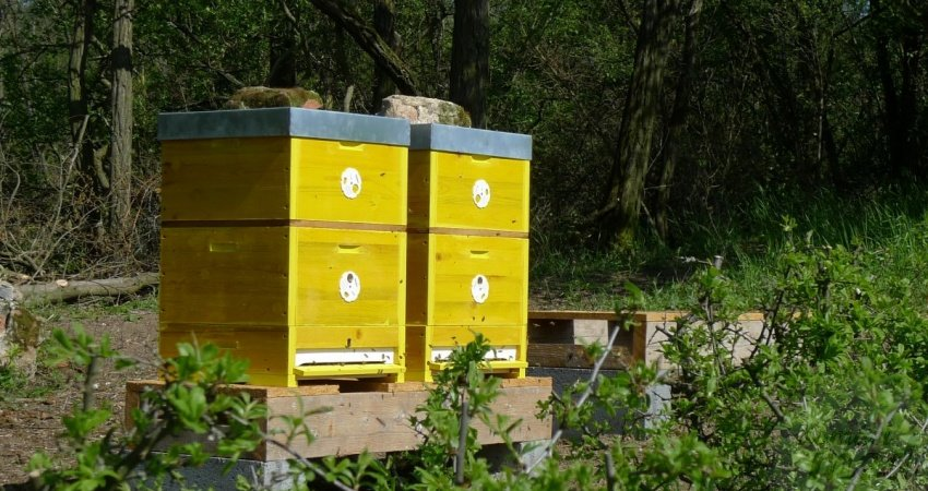 Nástavkové včelí úly